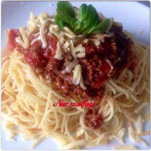 bolognesespagetti (1)