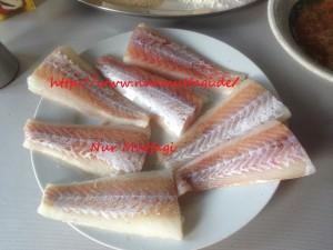 fishmäc (3)