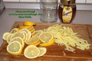 dogal iksir antibiyotik zencefil bal limon tarcin (2)