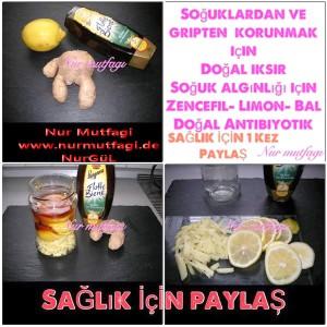 dogal iksir zencefil limon bal