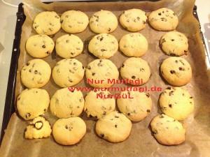 kus üzümlü findikli hindistan cevizli kurabiyeler (10)