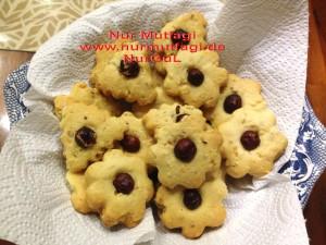 kus üzümlü findikli hindistan cevizli kurabiyeler (12)