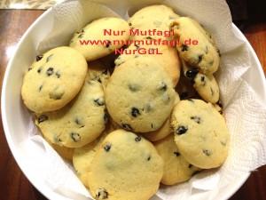 kus üzümlü findikli hindistan cevizli kurabiyeler (13)