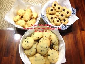 kus üzümlü findikli hindistan cevizli kurabiyeler (15)