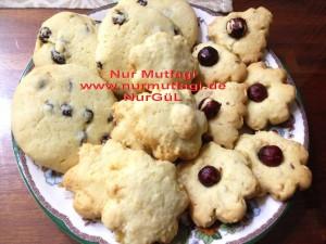 kus üzümlü findikli hindistan cevizli kurabiyeler (16)