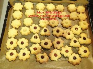 kus üzümlü findikli hindistan cevizli kurabiyeler (9)