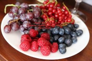 mevsim meyvesi frambuaz yaban mersini üzüm (1)