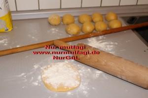 gercek su böregi orginal (10)
