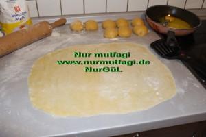 gercek su böregi orginal (14)