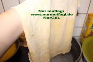 gercek su böregi orginal (15)