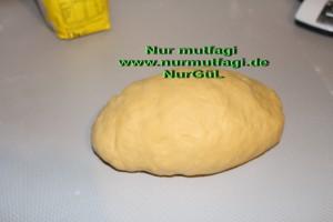 gercek su böregi orginal (3)