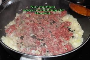 gercek su böregi orginal (4)
