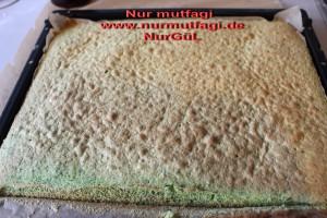 ispanakli rulo pandispanya keki (9)