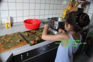 taze yaprak sarmasi (10)
