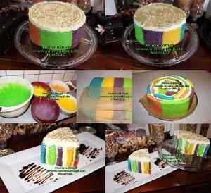 5 renkli gökkusagi pastasi regenbogen torte set (46)