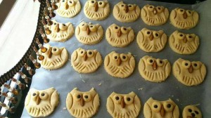 baykur kurabiye (1)