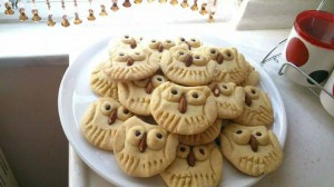 baykur kurabiye (2)