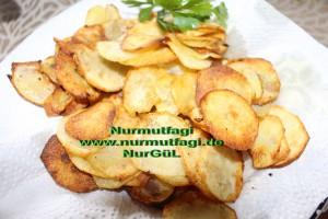 biber kizartmasi domates soslu, citir patates (4)