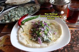 mayali ekmek tarifi - konya karaman küflü tulum peyniri sikmasi (13)