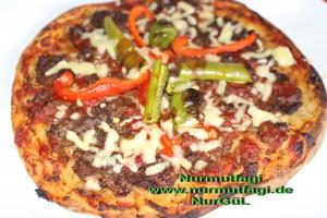 mini pizza salamli, tonbalikli, kiymali (12)