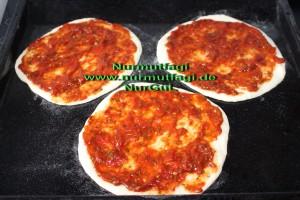 mini pizza salamli, tonbalikli, kiymali (5)