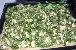 peynirli ispanakli gercek ev yapimi su böregi (11)