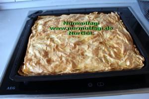 peynirli ispanakli gercek ev yapimi su böregi (13)