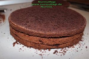 cikolatali pandispanya  (13)