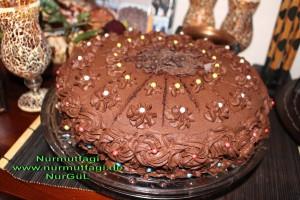 cikolatali yas pasta pandispanya (28)