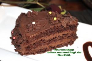 cikolatali yas pasta pandispanya+ (46)