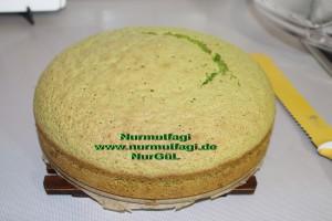 ispanakli yas pasta pandispanya keki (16)