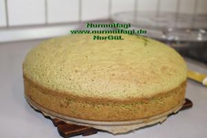 ispanakli yas pasta pandispanya keki (17+)