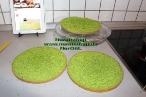 ispanakli yas pasta pandispanya keki (21)