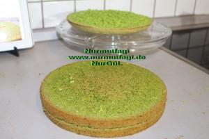 ispanakli yas pasta pandispanya keki (23)