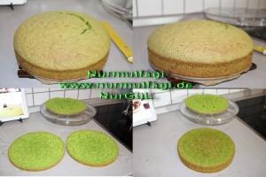ispanakli yas pasta pandispanya keki (3)