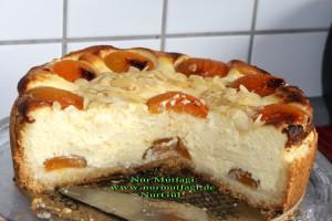 aprikosen käsekuchen cizkek (23)