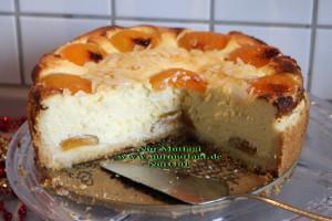 aprikosen käsekuchen cizkek (3)