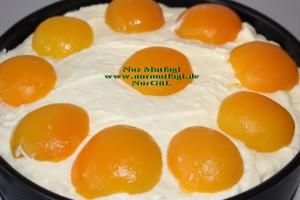 aprikosen käsekuchen kayisili cizkek (24)