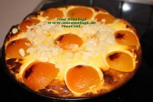 aprikosen käsekuchen kayisili cizkek (29)