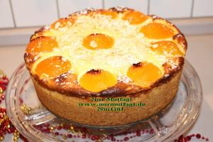 aprikosen käsekuchen kayisili cizkek (32)