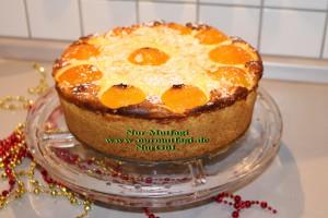 aprikosen käsekuchen kayisili cizkek (33)