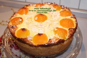 aprikosen käsekuchen kayisili cizkek (37)