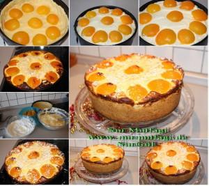 aprikosen käsekuchen kayisili cizkek (4)