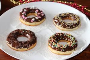 berliner ve donuts donat (103)