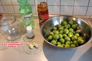 elma tursusu (1)
