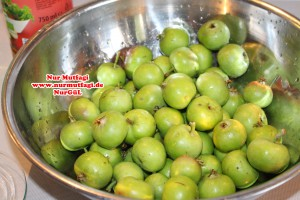 elma tursusu (2)