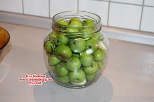 elma tursusu (4)