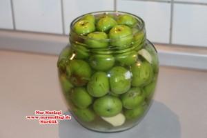 elma tursusu (6)