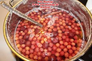 visnesuyu meyve suyu (10)