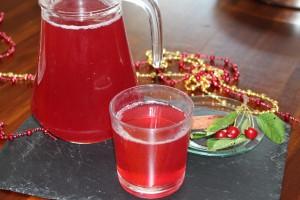 visnesuyu meyve suyu (13)